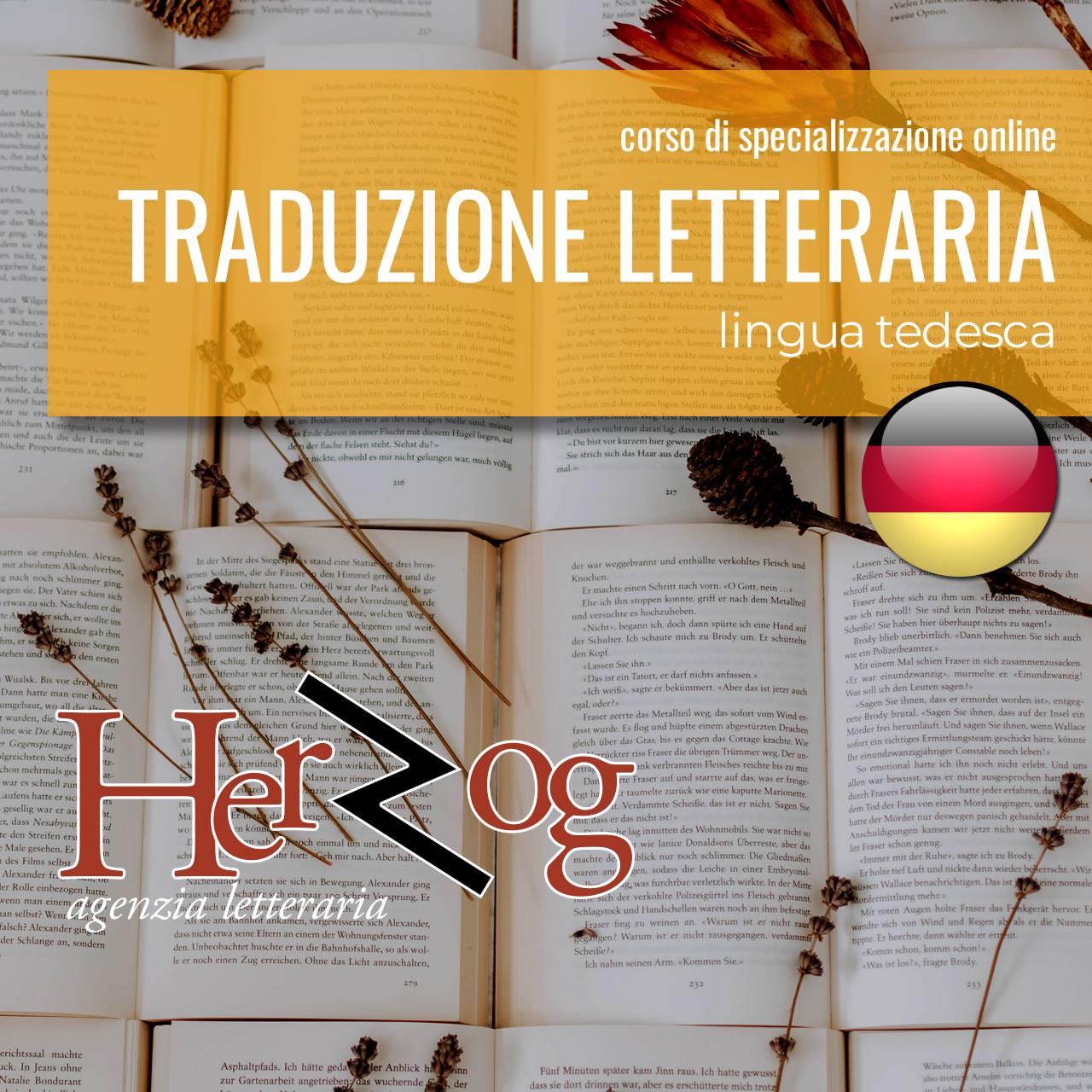 IL LAVORO DEL TRADUTTORE LETTERARIO (lingua tedesca)